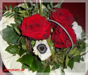 Blumen Rosen 1