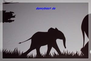 Elefant Detail